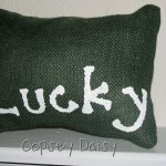 lucky pillow_done2