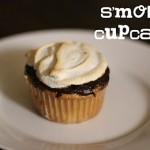 smores cupcakes_whole