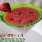 watermelon punch_title
