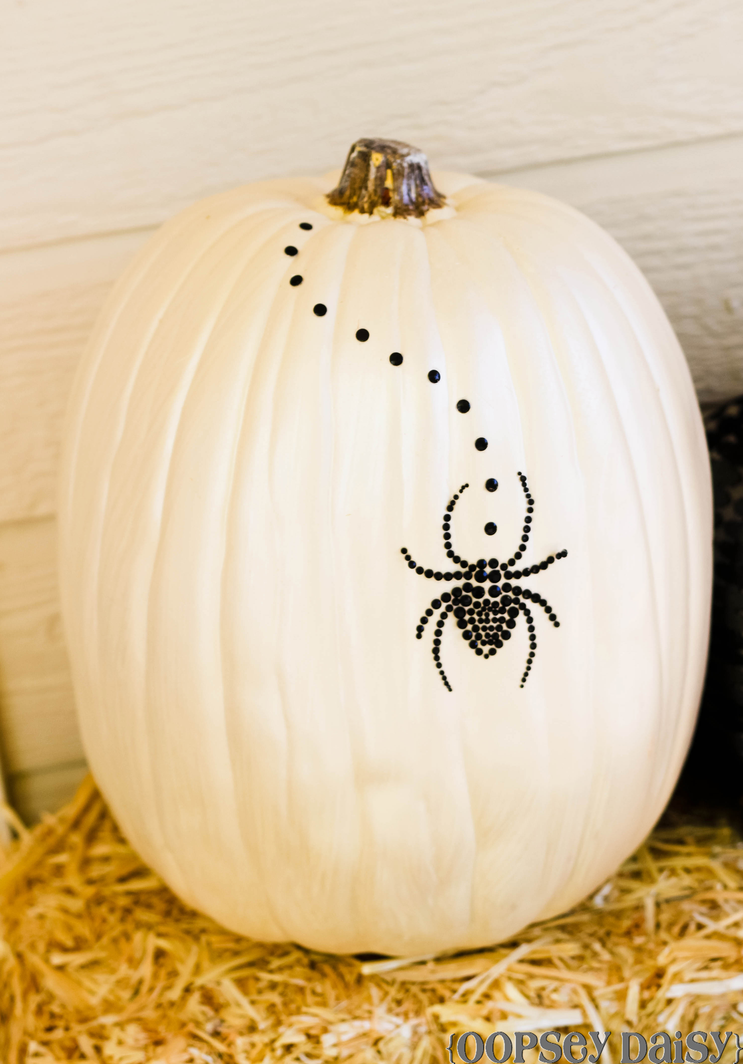 Black and White Pumpkins | Oopsey Daisy