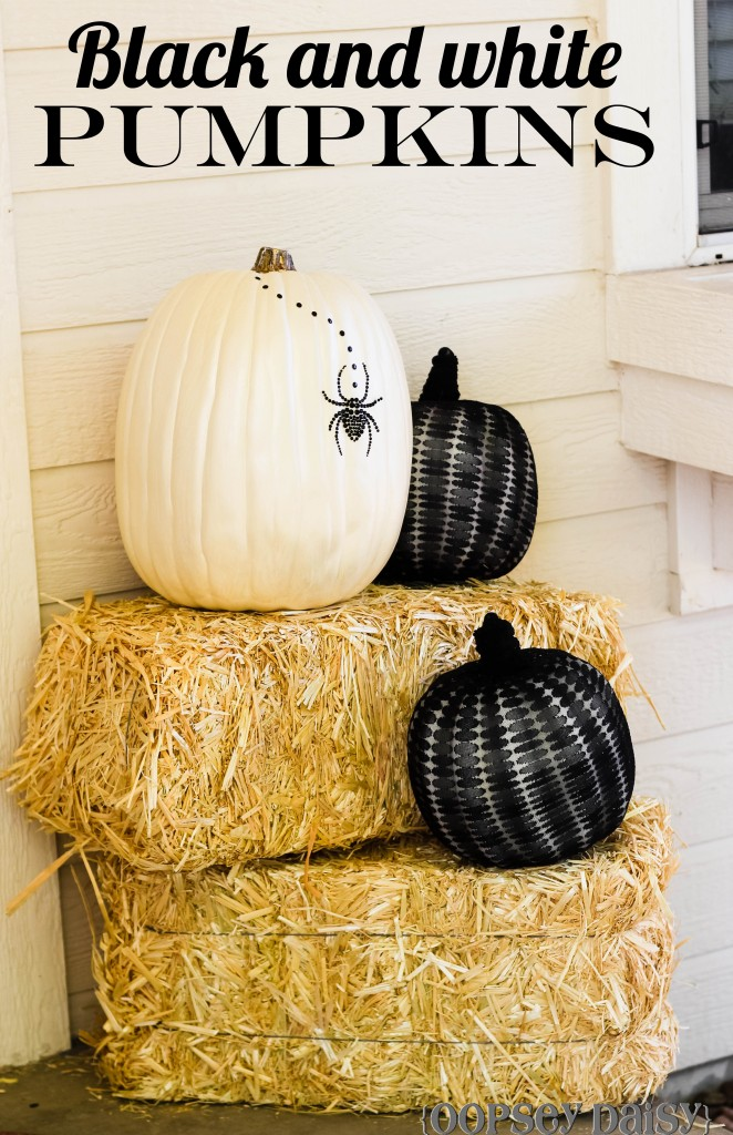 White and black pumpkins on bales of hay